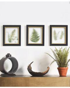 Alpini Framed Art Trio